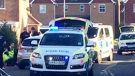 Police incident in Swanton Close, March.