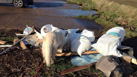 Fly tipping, Lambs Hill Drove, March