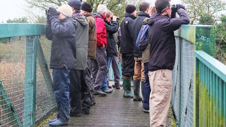 A group enjoys the annual Winter Wildlife Walk, in Ely.