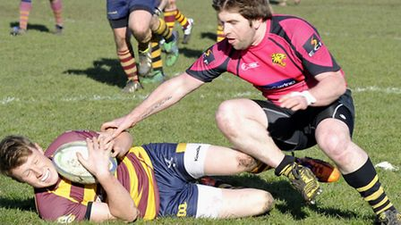 Ely Tigers Rugby v Ipswich,