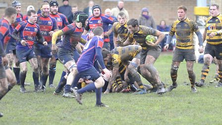 Ely Tigers rugby v Thurston,