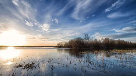 Ouse Washes by Paul Constable.