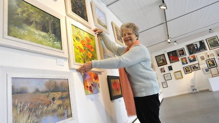 Ely Art Lover's Exhibition, at Babylon Gallery, Barbara Harlow, from Soham, with her work.