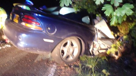 The aftermath of the collision between the car and tree.