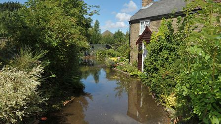 March floods. The day after. A Gold Street garden Picture: Steve Williams.