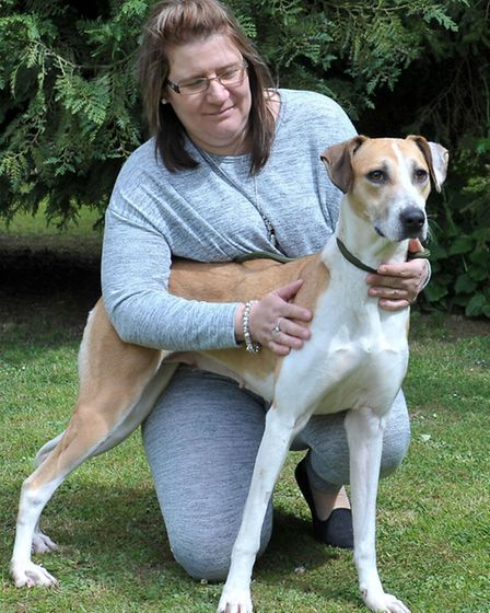 Shelley Ridgeon from Ravenswood pet rescue with Monica. Picture: Steve Williams.