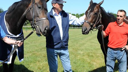 Golden Horn, the winner of yesterday's thrilling Investec Derby at Epsom was joined by stable compan