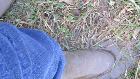 Squelchy wellies at Showfields.