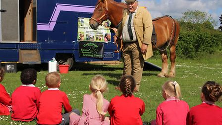 Paul Smith speaks to pupils about his Suffolk Punch, Miles.
