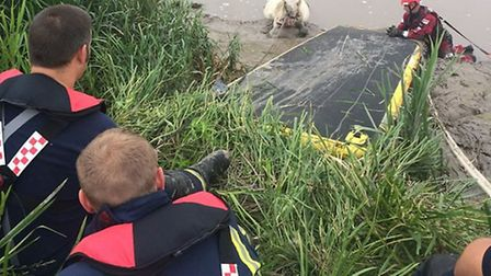 Firefighters rescued a horse from the river near Guyhirn. Picture: CAMBS FIRE & RESCUE SERVICE