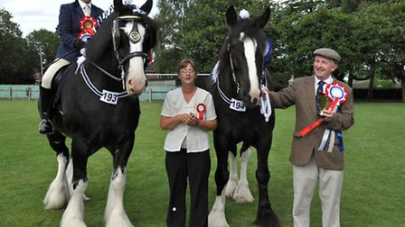 Upwell Horse and Pony Show