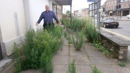 Cllr Paul Clapp looks at some of the overgrown foliage on the site of the building in Churchill Road