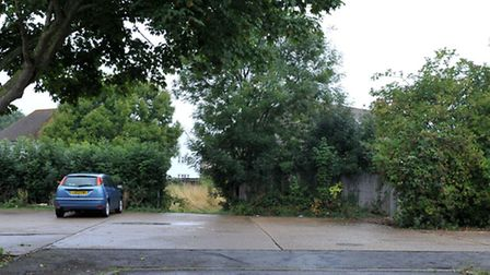Limes close Littleport. Picture: Steve Williams.