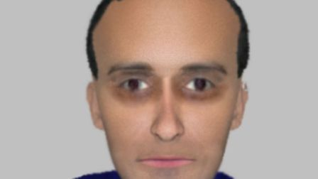 E-fit of man alleged to have tried to have stolen a dog.
