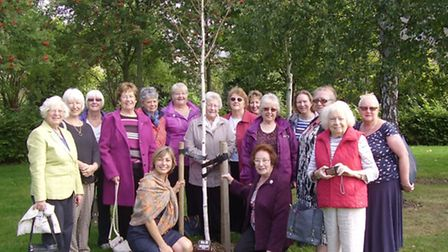 Ely City and Ely Northwold tree unveil