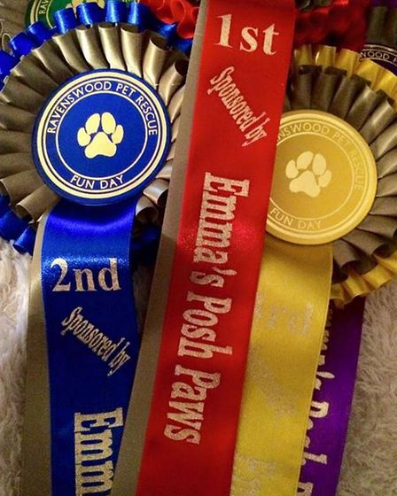 Rosettes for the fun dog show at Ravenswood Pet Rescue fun day