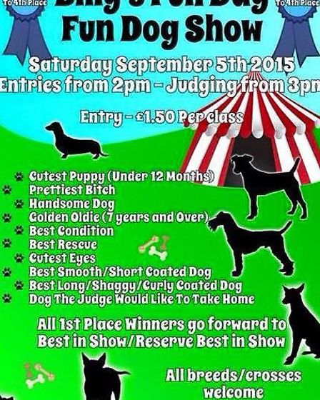 Fun dog show for the Billy Lee fun day