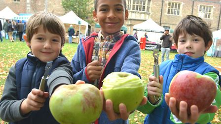 Ely Apple Festival, (l-r) Jeremy, Seb, James, from Ely, peeling their apples,