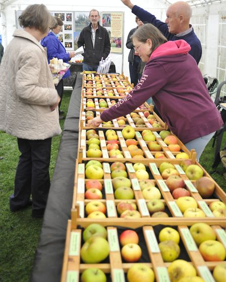 Ely Apple Day,