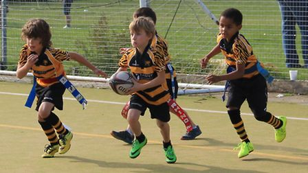 Rugby annual Cambridgeshire Minis Festival.