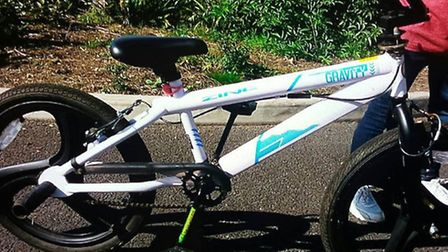 Cycle - similar to this- stolen from Chatteris
