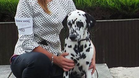 Charlotte Page is running the 2016 London Marathon for Dogs for the Disabled