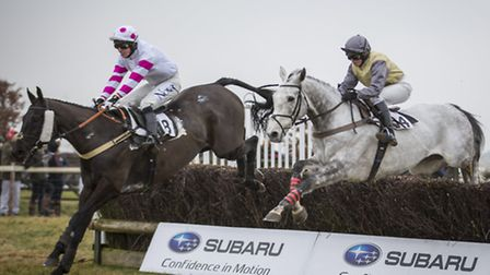 Point to point season launches at Cottenham