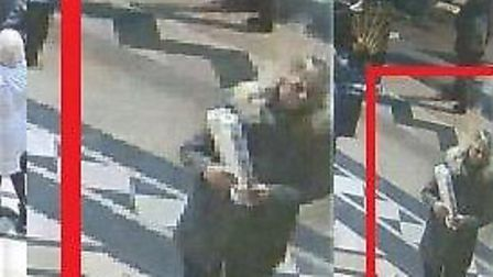 Police are trying to identify this woman after a mobile phone was stolen from Ely cathedral last mon