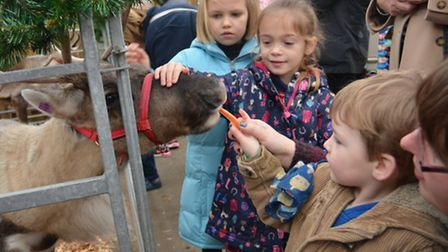 Twenty Pence Garden Centre, Reindeer visit, (l-r) Eva, Lacey, from Ely, and William, from Three Hole