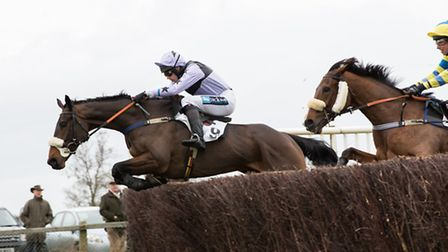 Lilbitluso racing at the Cottenham Point-to-Point race on Saturday. Picture: Graham Bishop