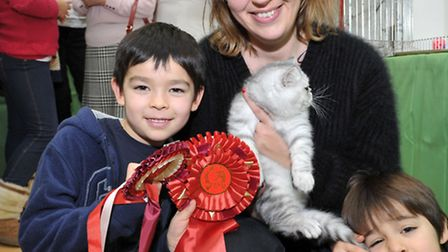 14th Exotic Cat Show championship at Tydd St Giles community centre. Charlotte, George and Oliver NG