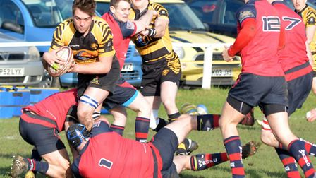 Ely Tigers Rugby v Wisbech,