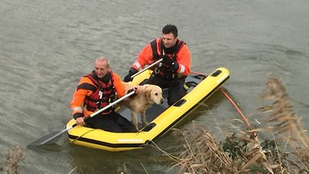 Dog rescue at Ten Mile Bank: Pictures Tim EdwardsThe two chaps on the raft are: Kevin Peat (behind