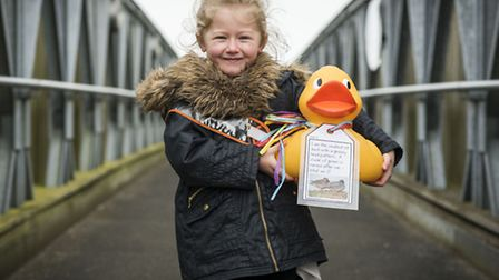 A giant duck hunt is currently on at WWT Welney - Lilly-May Hill (5) with one of the ducks. Picture: