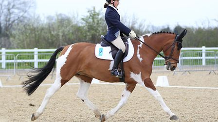 Freia Gould and her horse, Topflight Syanarra at the National Schools Equestrian Associations County