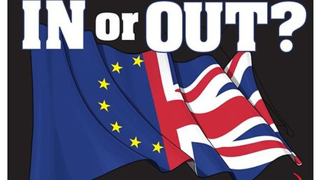 In or Out EU Logo for Cambs Times