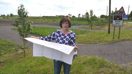 Mary Gris outside the plot of land in Little Downham where the bird sanctuary is to be built.