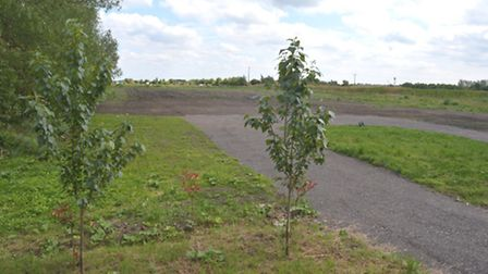 The four-acre piece of land where the Gris family's bird sanctuary is to be built next year.