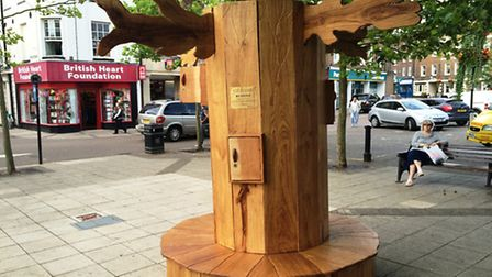 The reading tree in Wisbech