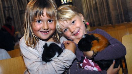Maia Walker, 8, with Fluffy, and her sister Bella, 4, with Scruffy. The guinea pigs are also sisters