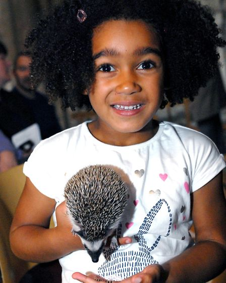 Eleanor Stewart, 5, withAfrican pygmy hedehog Pistachio at the Ely Cathedral Pet Service