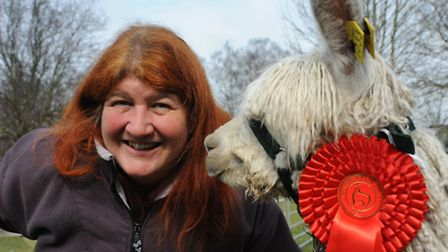 Liz Wright with an alpaca at Houghton Hall