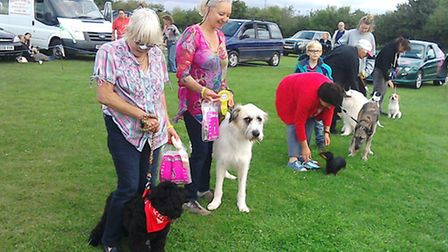 Fun dog show at Emneth raises money for Galgos Del Sol rescue dogs in Spain
