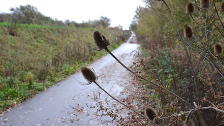 Public rights of way in Cambridgeshire have all been compiled into one document for the first time s
