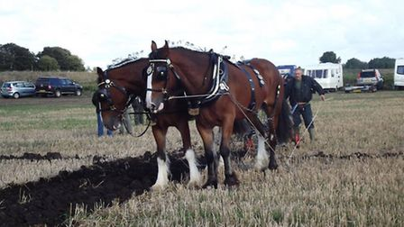Prickwillow ploughing festival picture by Arthur Paske