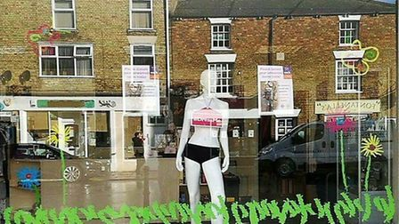 Daisy in the Whittlesey shop window