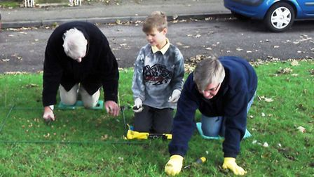 The Rotary Club of Ely-Hereward has begun to plant 10,000 corms as part of nationwide initiative Pur