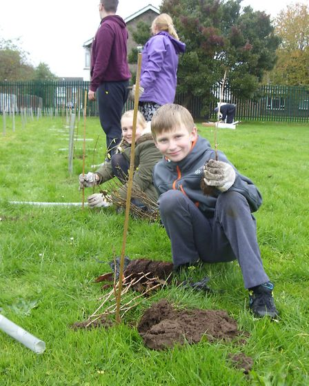 Children from Orchards Primary School in Wisbech plant 400 saplings