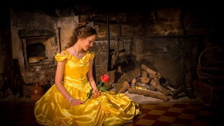 Beauty and the Beast is coming to Ely College in December