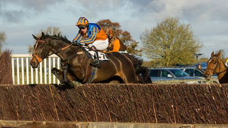 Lough Inch at the Cottenham Point-to-Point. Picture: Graham Bishop